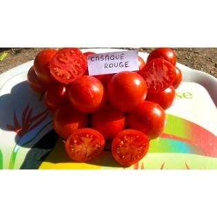Semences de Tomate Casaque Rouge