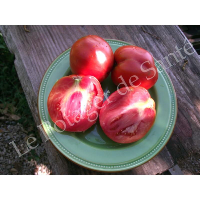 Tomate cœur de bœuf rouge Jérusalem