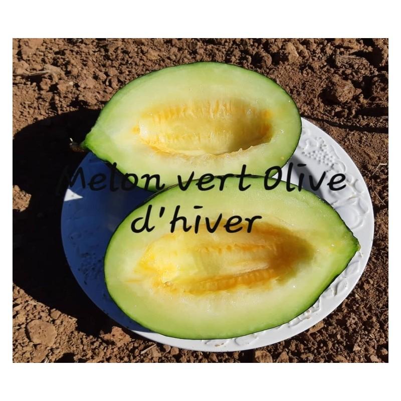 melon d'hiver vert olive ou de noël