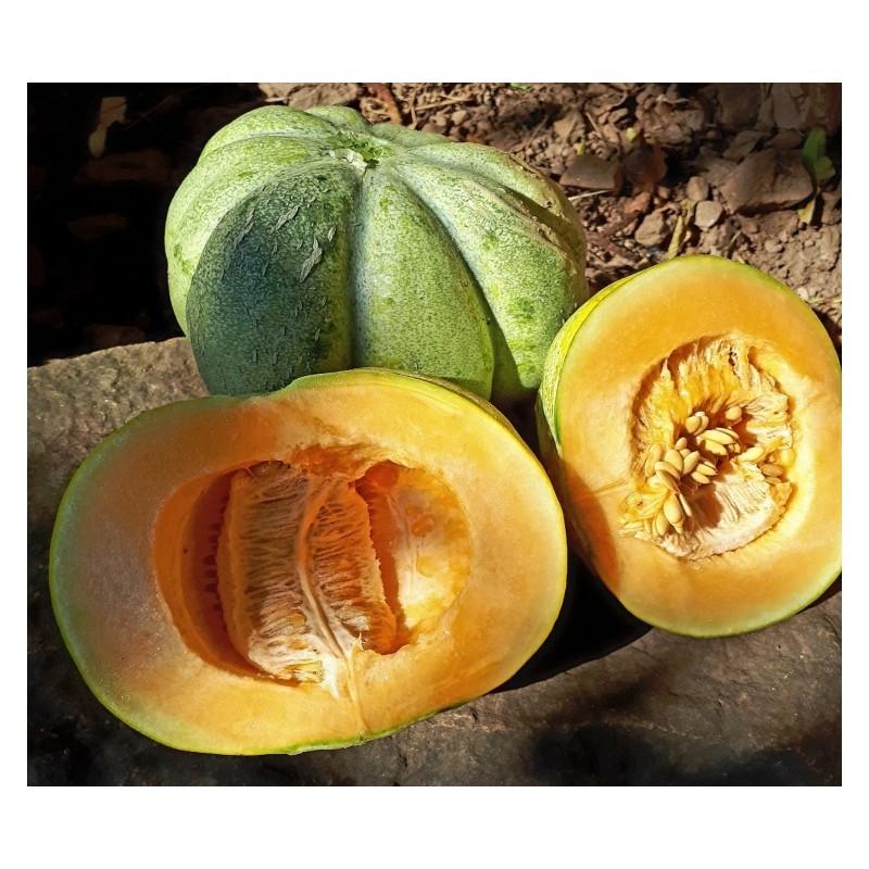 melon bellegarde