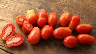 Nos tomates Italiennes