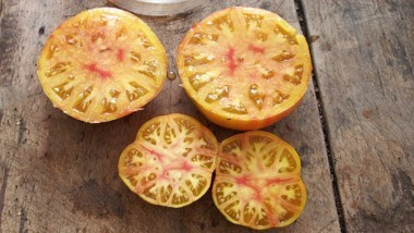 Tomates Verte / Jaune - Orange / Blanche
