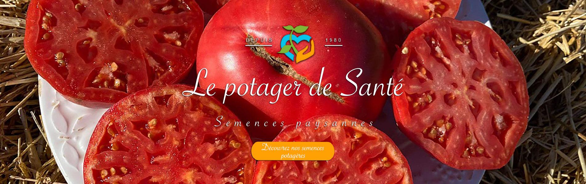 Le potager de Santé - Tomates Cherokee